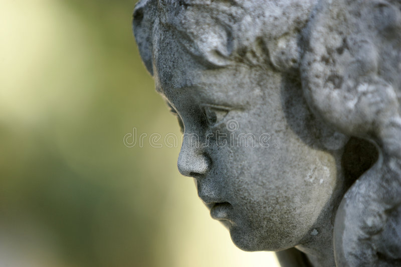 Baby Angel portrait royalty free stock photography