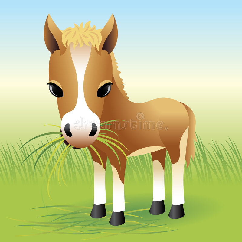 Baby Animal collection: Horse stock illustration