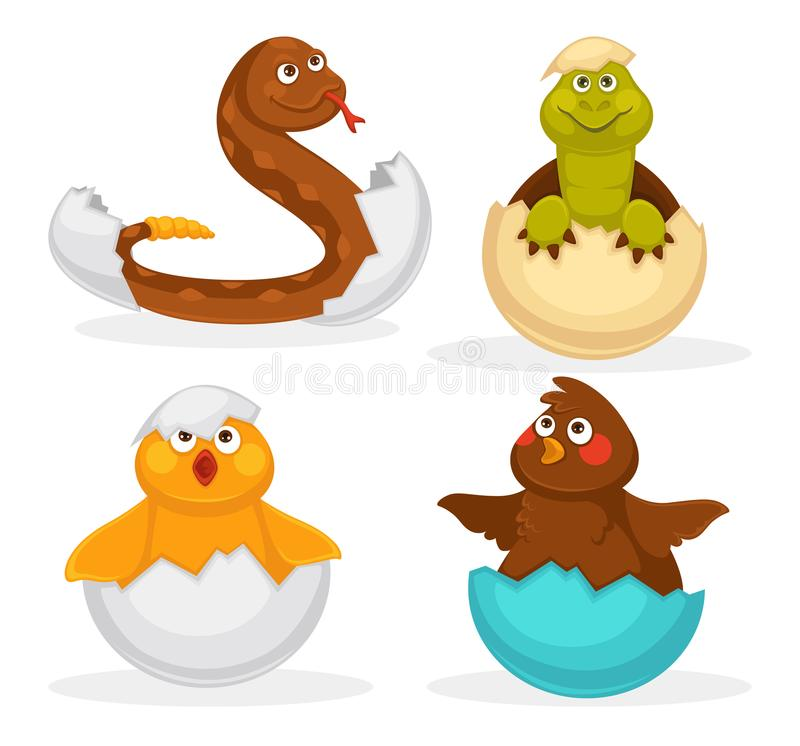 Baby animals hatch eggs or cartoon pets hatching. Vector flat isolated funny toy icons. Rattle snake, crocodile and dinosaur baby, chick or duck bird. Kid stock illustration