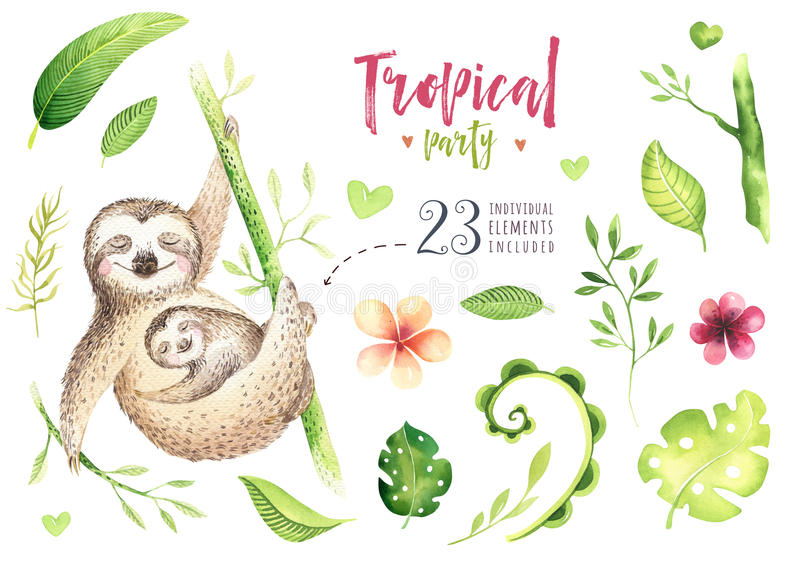 Baby animals sloth nursery painting. Watercolor boho tropical drawing, child tropical illustration. cute palm. Tree leaves, tropic green texture, exotic flower vector illustration