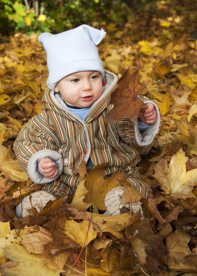 Download Baby in autumn leaves stock photo. Image of happy, children - 15523928