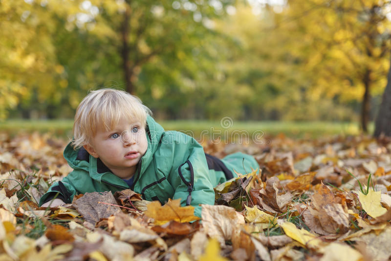 Baby in autumn leaves. Little boy lying in autumn leaves royalty free stock photo