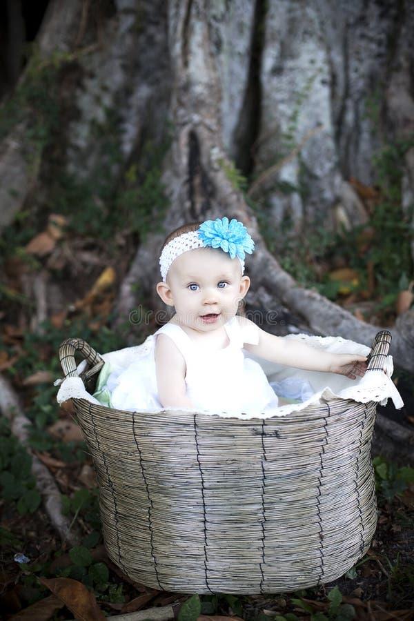 Download Baby in basket stock photo. Image of smiles, basket, park - 20713692