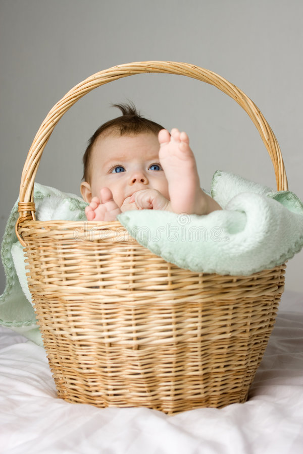 Baby in basket royalty free stock photos