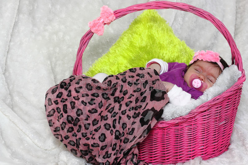 Baby in a basket stock photo