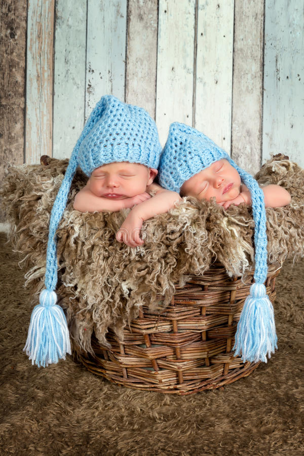 Baby basket with twins royalty free stock image