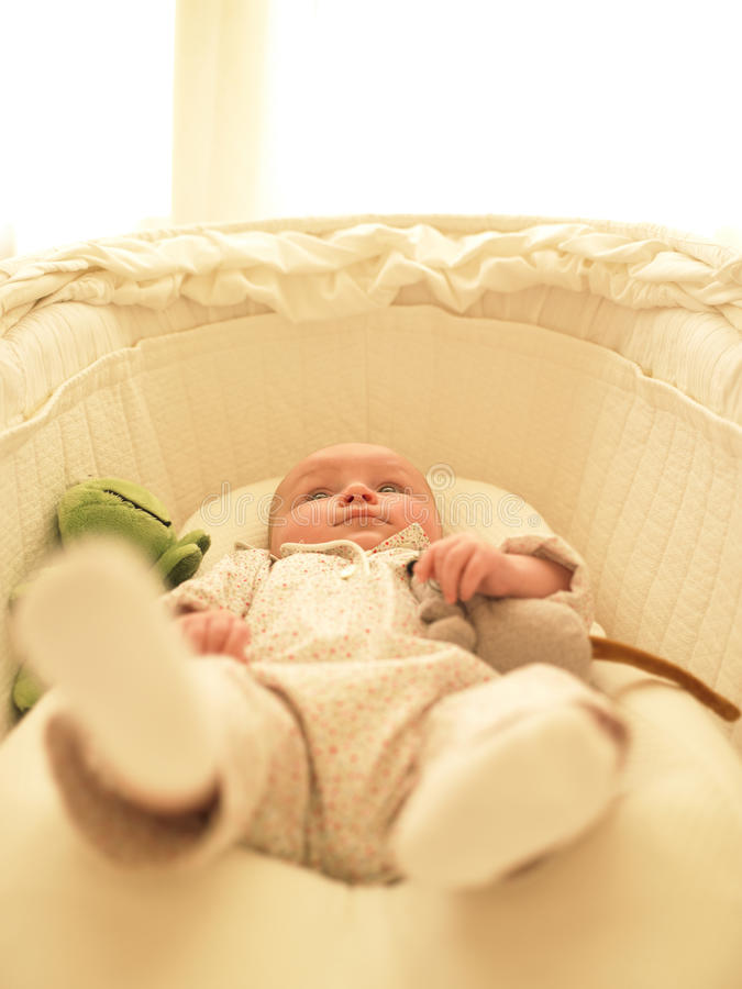 Baby in Bassinet. With toys. Vertically framed shot royalty free stock photo