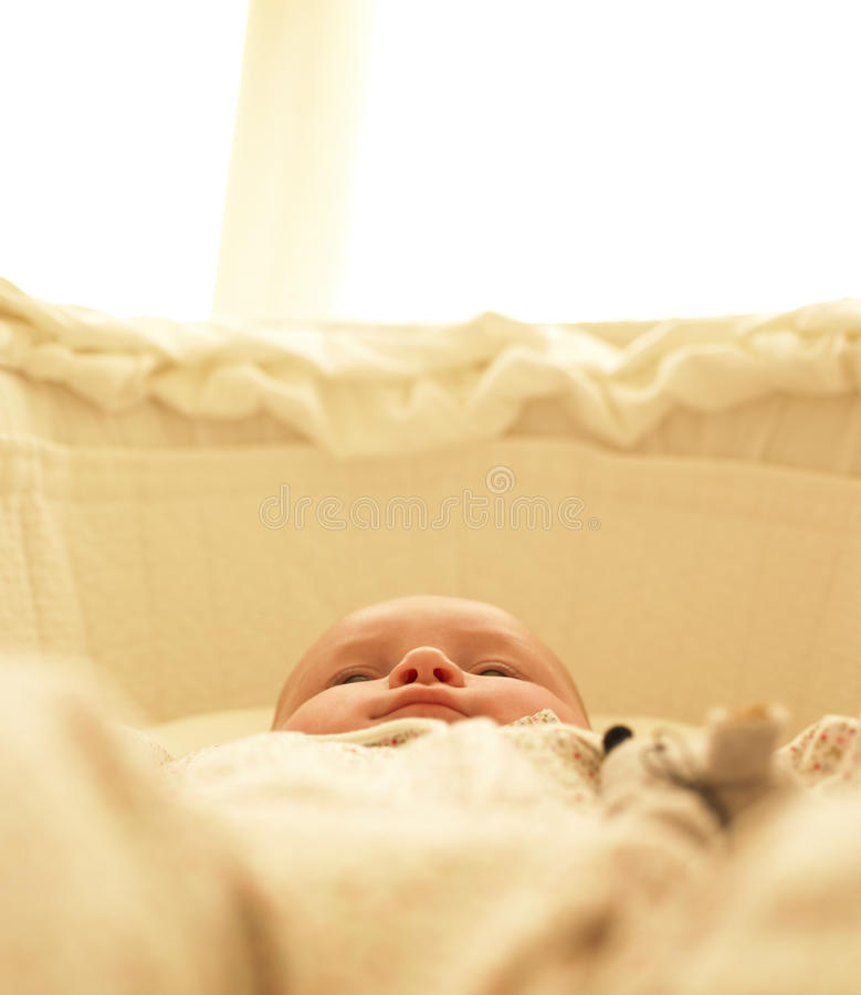 Baby in Bassinet. Vertically framed shot royalty free stock photos