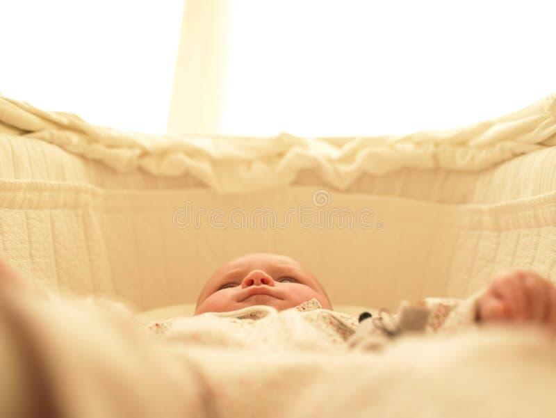 Baby in Bassinet. Horizontally framed shot stock image