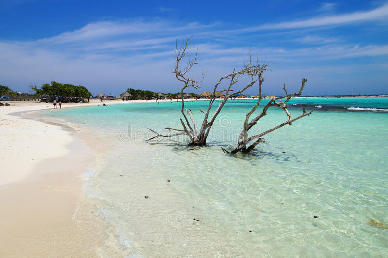 Baby Beach - Aruba. The famous Baby Beach in Aruba and its incredible blue sea color and shallow waters stock photos