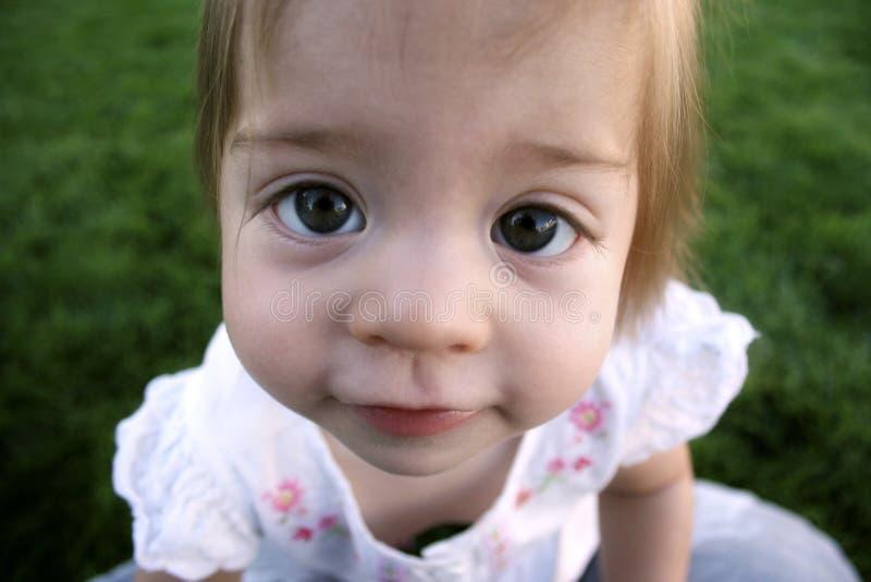 Download Baby Big Eyes stock image. Image of jumbo, look, eyes - 2933699