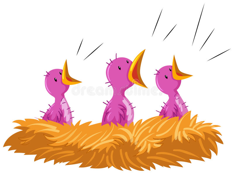 Baby birds crying in the nest. Illustration vector illustration