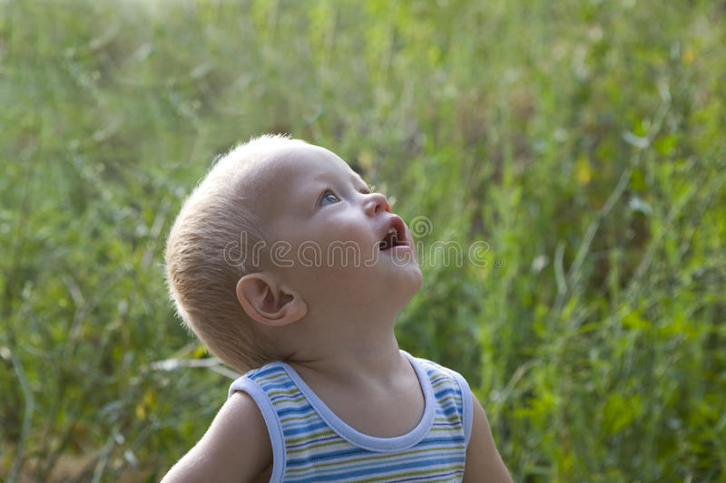 Download Baby Blond Boy Summer Outdoors At The Grass Stock Photo - Image: 13370380