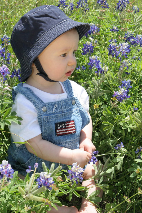 Baby in Bluebonnets3 royalty free stock photos
