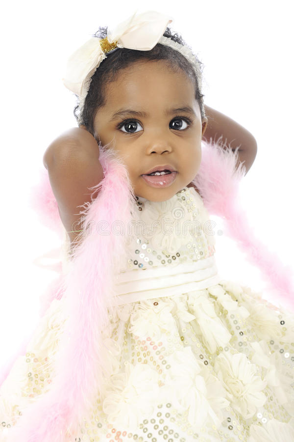 Baby-Boa-Schönheit stockfotos