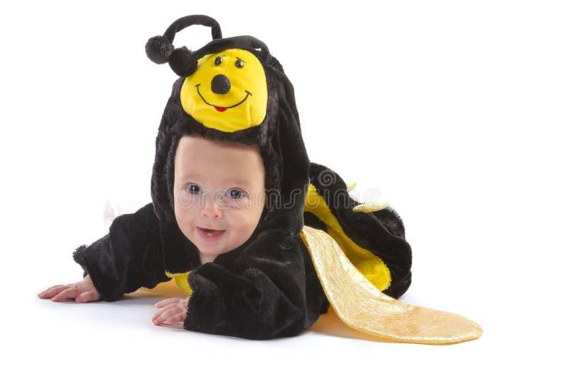 Baby boy dressed up like bee stock image
