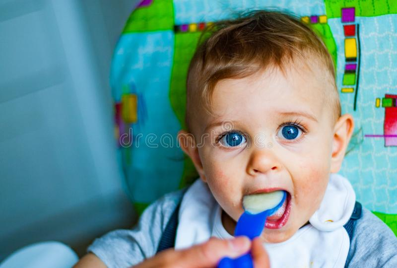 Baby boy eating food with spoon royalty free stock image