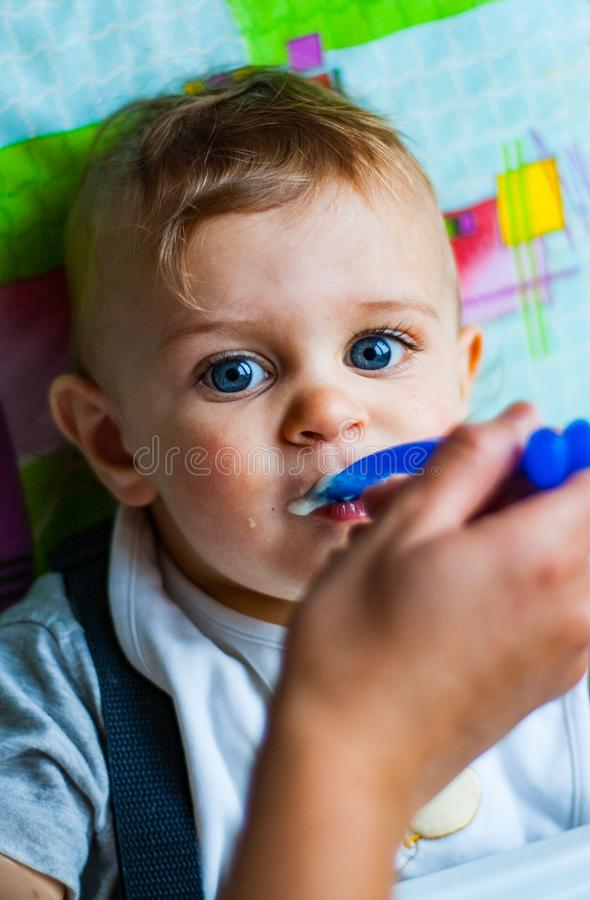 Baby boy eating with spoon at home stock images