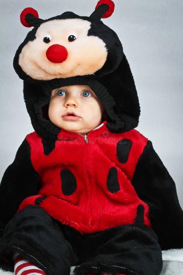 Baby boy with a ladybug costume stock image