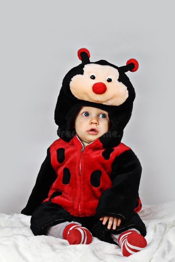 Baby boy with a ladybug costume royalty free stock image