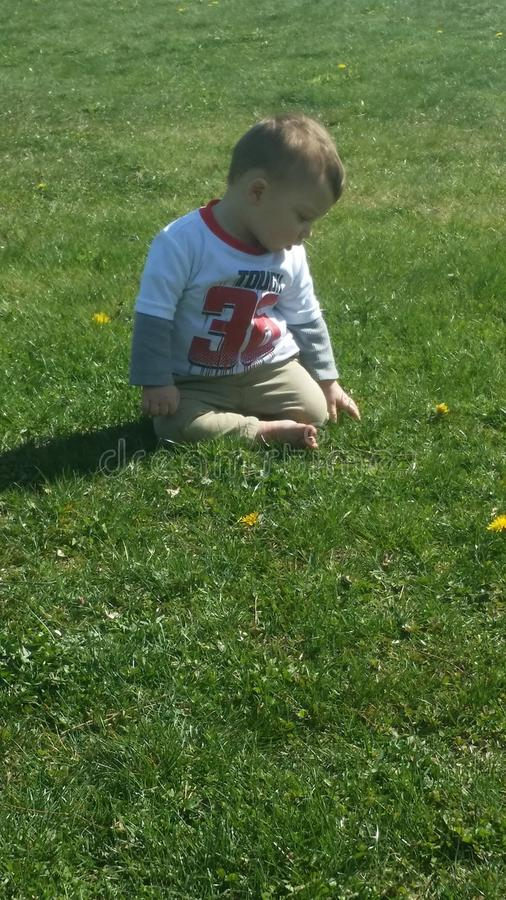 Baby boy playing in summer grass stock photo
