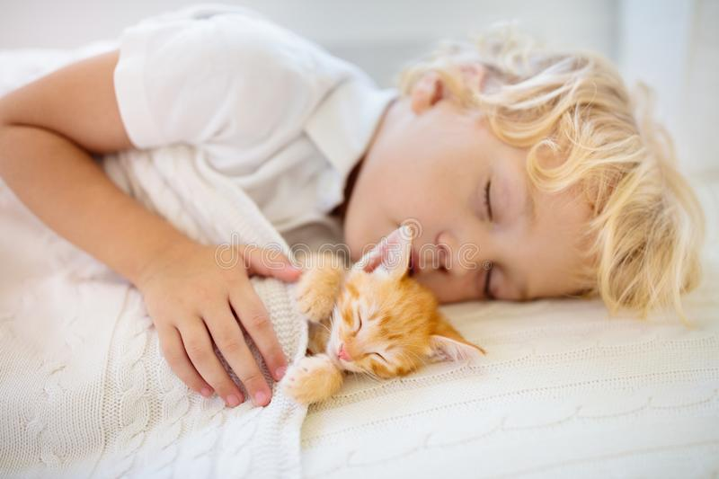 Baby boy sleeping with kitten. Child and cat. Baby boy sleeping with kitten on white knitted blanket. Child and cat. Kids and pets. Little kid with his animal stock photo