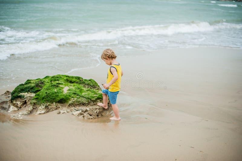Baby boy walking on the sandy beach near the sea. Cute little kid at sand tropical beach. royalty free stock photo