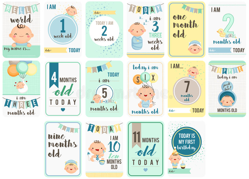 Baby Boy Weeks and Months Card vector illustration