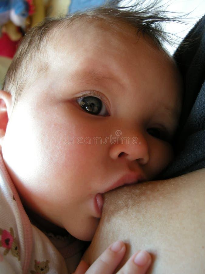 Baby breast feeding royalty free stock photos
