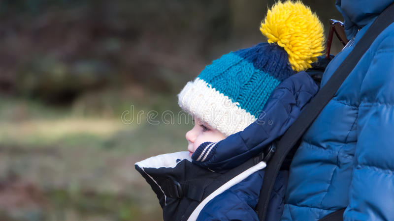 Baby in the carrier royalty free stock image