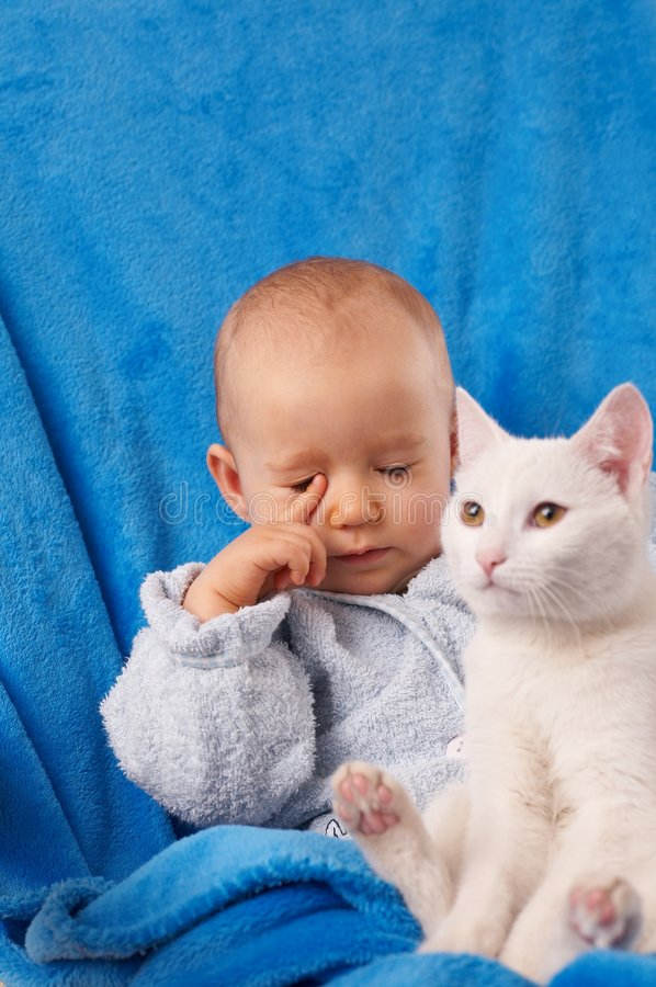 Download Baby with cat stock image. Image of face, young, towel - 3999987