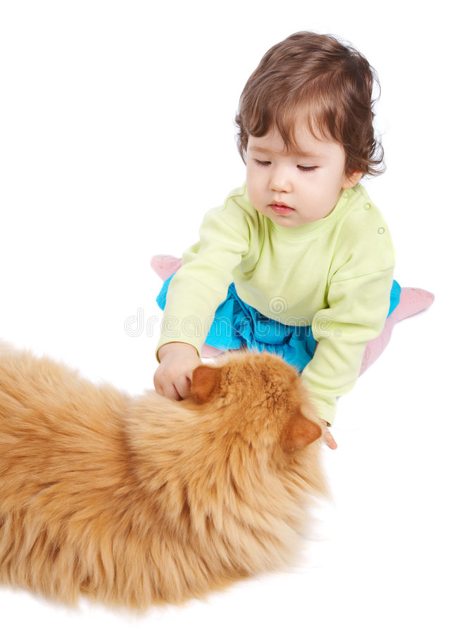 Download Baby and cat stock photo. Image of hand, friendship, companion - 5964846