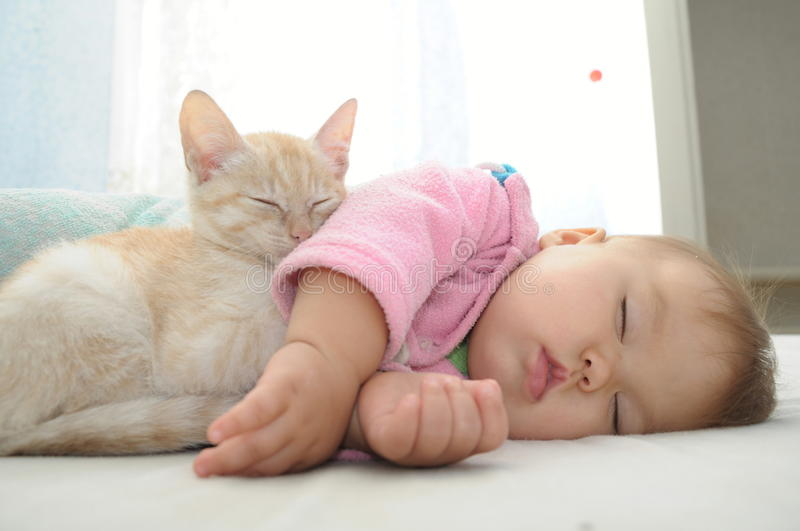 Baby and cat daytime sleeping. Baby and cat sleeping together on white sheet stock photo