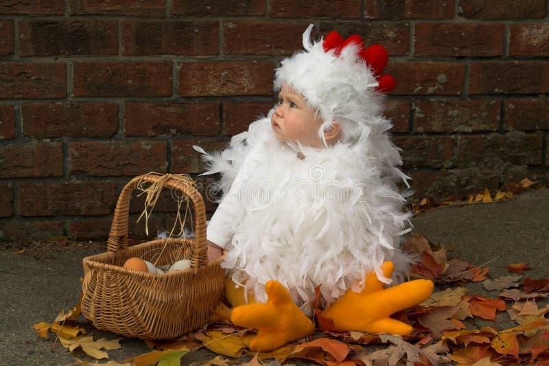 Baby Chick stock photo