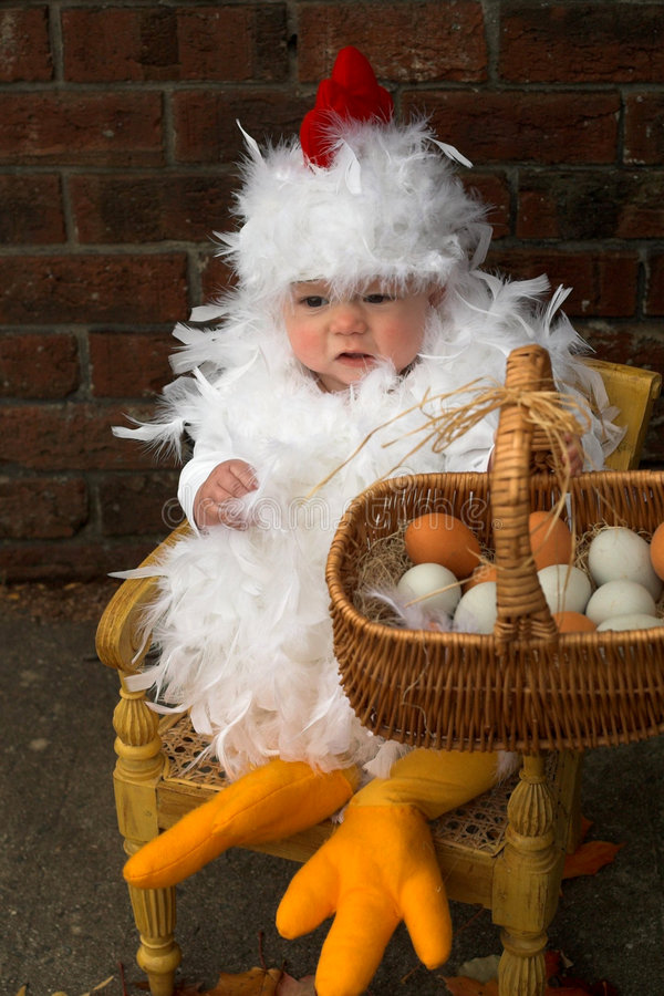 Download Baby Chick stock image. Image of costume, small, chick - 2460431