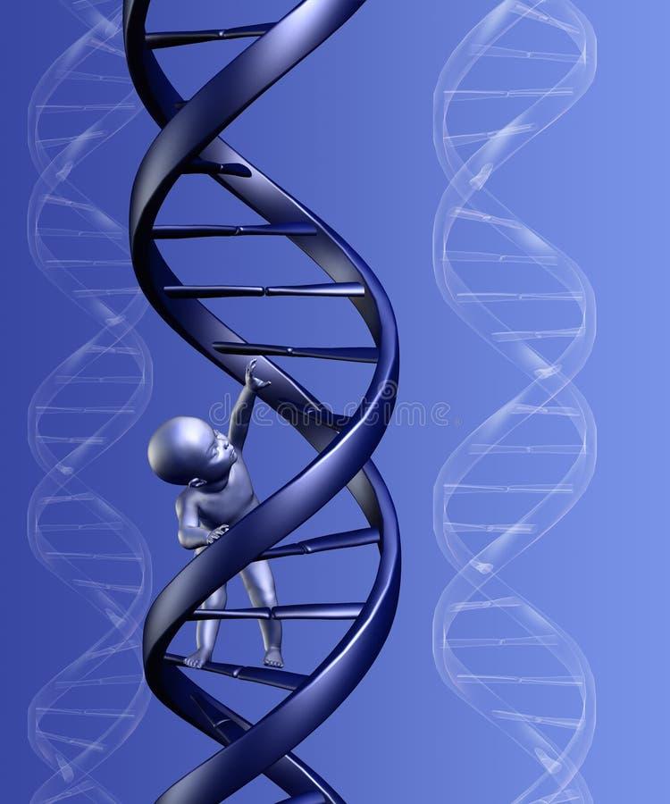 Baby Climbing Strand of DNA vector illustration
