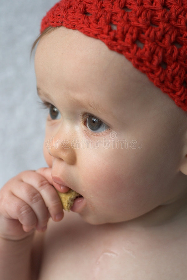 Download Baby Cookie stock photo. Image of gorgeous, hand, crumb - 1799826