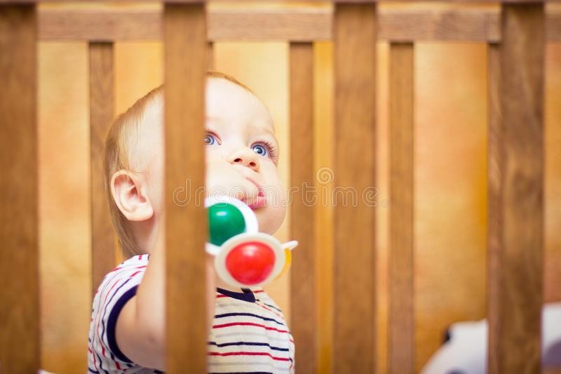Download Baby in cot stock photo. Image of brattery, rattle, sleeping - 21671308