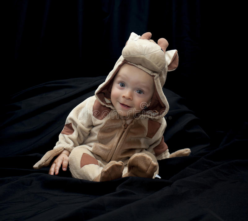 Baby in cow costume stock images