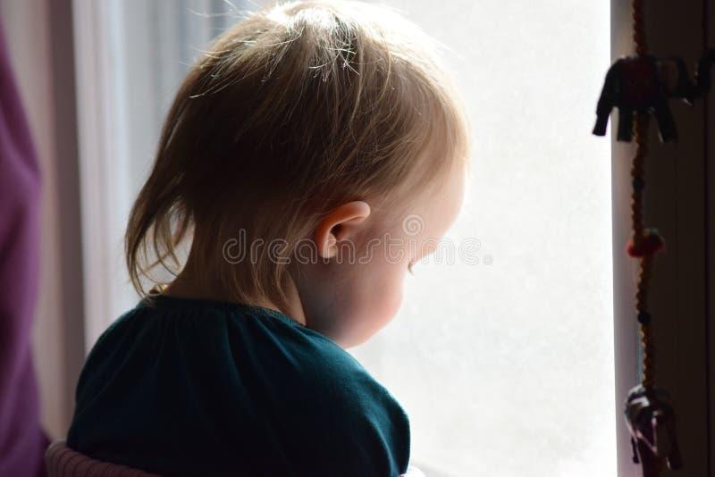 Baby, das aus einem Fenster heraus anstarrt stockbild