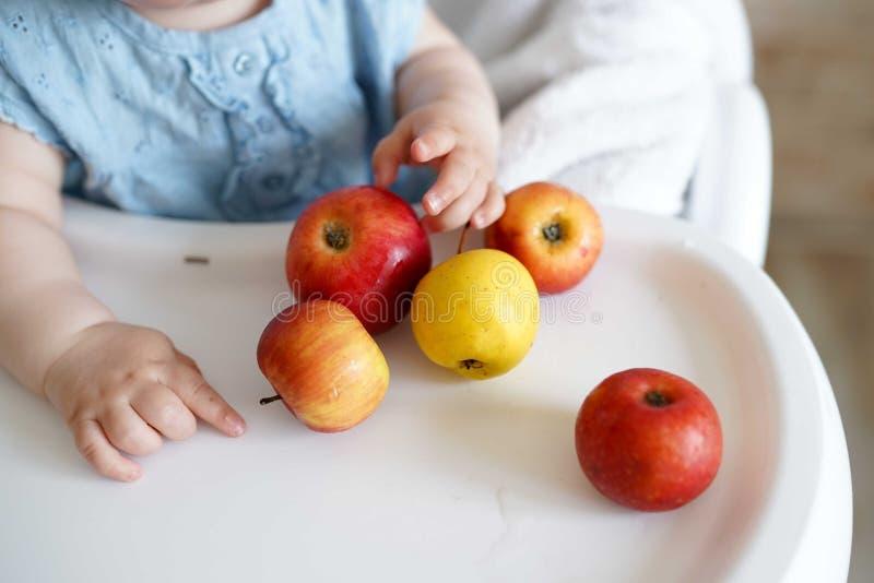 Baby, das Frucht isst gelbe und rote Äpfel in den Händen des kleinen Mädchens in der sonnigen Küche Gesunde Nahrung für Kinder Fe stockbilder