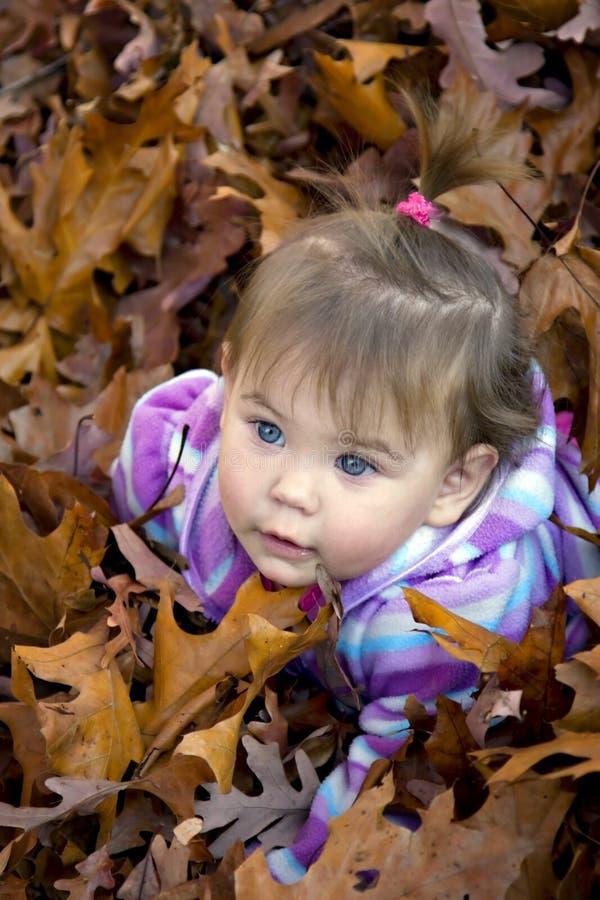 Baby in den Herbstblättern stockfotos