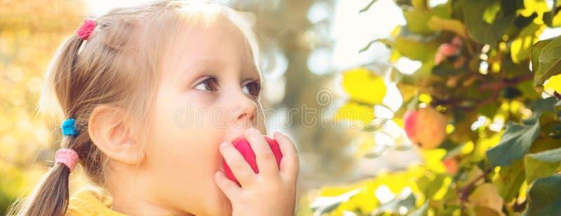 Baby des kleinen Mädchens isst Saisonäpfel lizenzfreie stockfotos