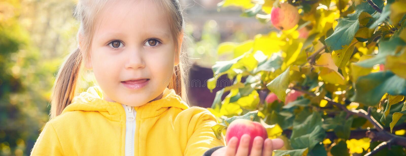 Baby des kleinen Mädchens isst Saisonäpfel stockbild