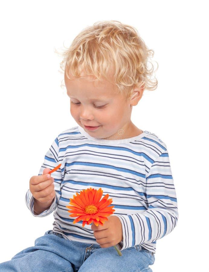 Baby des weißen gelockten Haares und der blauen Augen mit Blume stockfotografie