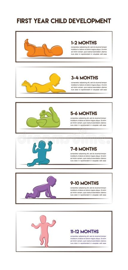 Baby Development Stages Milestones First One Year- colorful infographics . Child milestones of first year. Baby Development Stages Milestones First One Year royalty free illustration