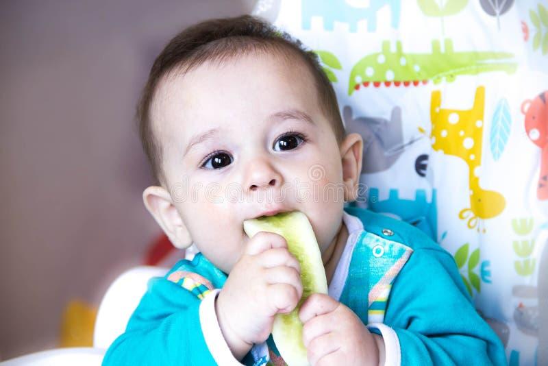 Baby die groenten eten als hoge voorzitter tandjes krijgend, de komkommer, het concept voedsel, het voeden Pasgeboren huis Gezond stock afbeeldingen