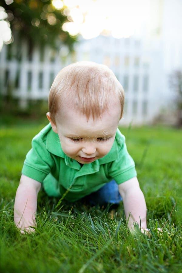 Baby die in het gras kruipt royalty-vrije stock afbeelding