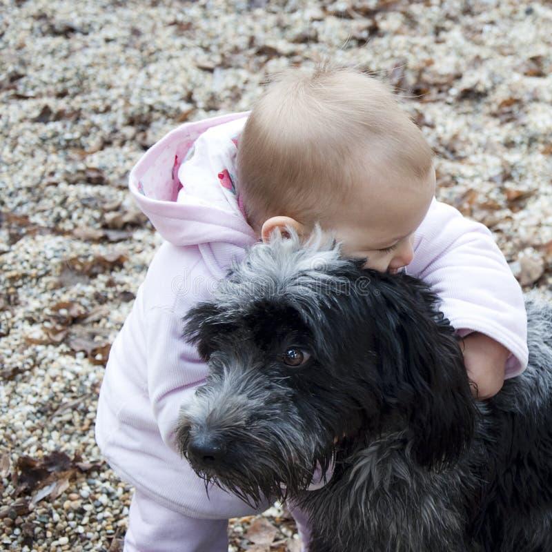 Baby die hond koestert. stock foto