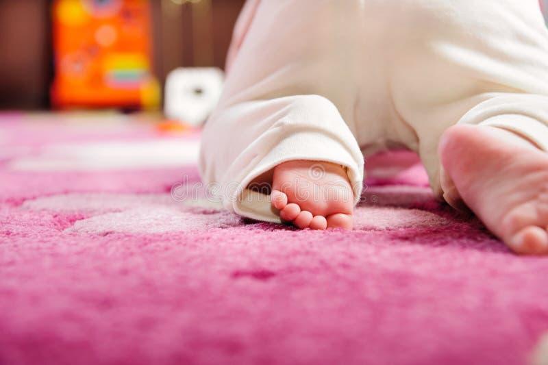 Baby die op roze tapijt kruipt royalty-vrije stock fotografie